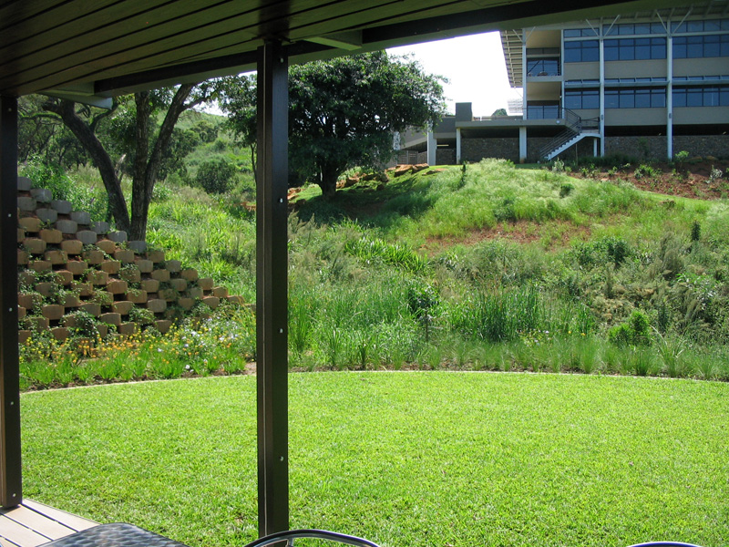 Sweeping, crisp lawns, a foil to indigenous grassland inspired planting, viewed from the deck