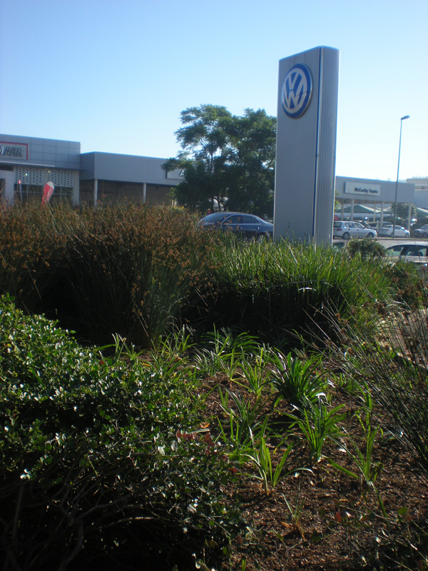 Newly revamped indigenous gardens at Barons VW