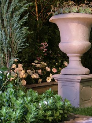 2006 Garden & Leisure Show. Victorian urns filled with Echevaria elegans, Rosa Pearl of Bedfordview